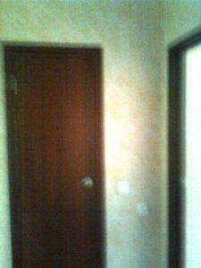 Тютчева 95и двери